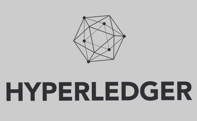 Customized Hyperledger Solutions