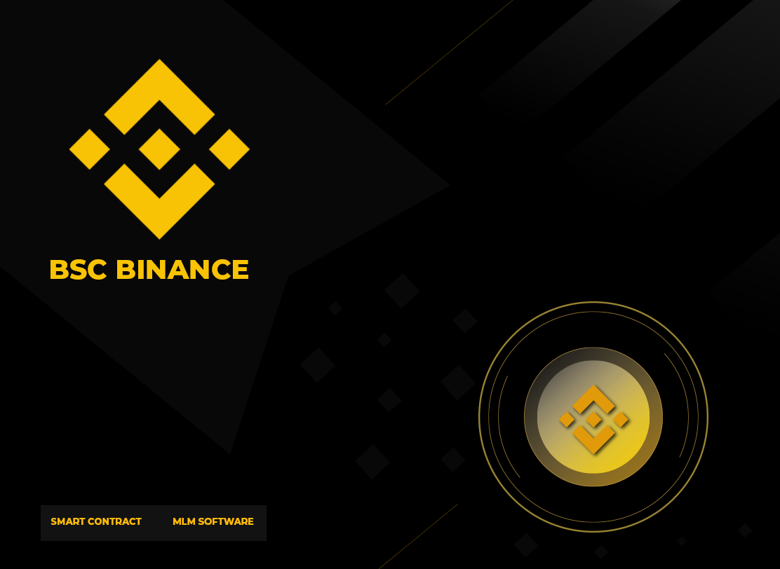Binance Smart Contract Developer in Syktyvkar