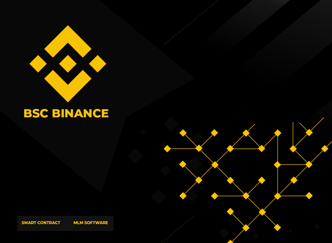 Binance Smart Contract Developer in Sysert