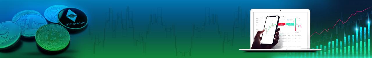 Cryptocurrency Exchange Software Developer in Delhi
