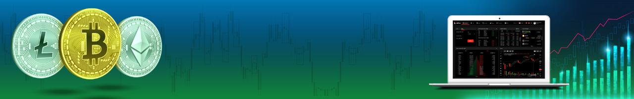 Cryptocurrency Exchange Software Developer in Gangtok